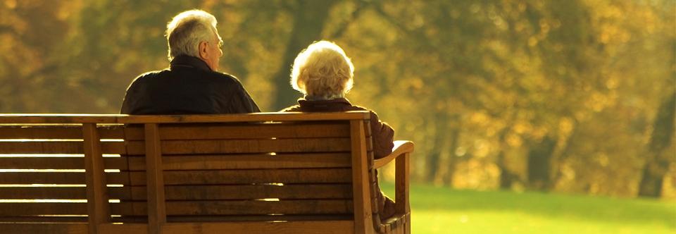 Previdência Social (INSS)